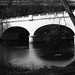 Leica iii_017