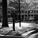 Leica iii_004