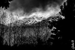 Cordillera de los Andes (John B Fotografía) Tags: andes bw blackandwhitephotography blackandwhite chile colina edward fujifilm fujinon fujinonxf50140mmf28rlmoiswrlens john johnbankson johnedwardbankson johnb lasgarzas losandes photographer southamerica ts2 topaz topazlabs topazstudio topazstudio2 xt2 xf50140mmf28rlmoiswrlens arboles blackwhite blackwhitephoto blanca blanco blancoynegro bwphotography cordillera fotografia fotografo fotógrafo montañas mountains natural nature negra negro nieve photographersonflickr photographersontumblr photography snow trees ©johnbankson