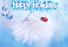 Happy holidays to you all 🎄🎅 (ElenAndreeva) Tags: colors christmas merry happy holidays holiday 2020 happiness ladybug amazing andreeva merrychristmas enjoy flickr macro 50mm colorful canon100 canon sweet cute new dream blur blue soft softness focus texture light snow