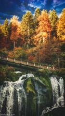 further up the falls (McMac70) Tags: autumn baum fall forest herbst jahreszeiten landschaft natur nature panasonicdmclx100 pflanze plant schwarzwald tree wald wasser wasserfall landscape scenic water waterfall