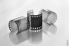 Back in black... (N.Batkhurel) Tags: film bw blackwhite black closeup mongolia macro ngc nikon nikondf nikkor nikkor105mm