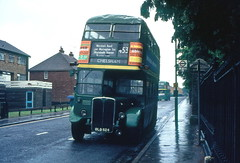 Long hot summer? (DaveAFlett) Tags: londoncountry lcbs nationalbuscompany 1976