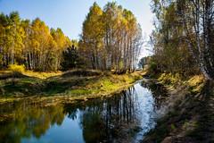 Channel (Milos Golubovic) Tags: vlasina lake jezero vlasinsko kanal srbija autumn sunny river reflexion birch birchtrees ngc