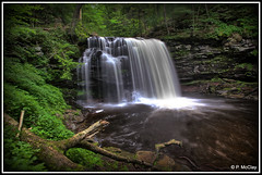 Harrison Wright Falls (pandt) Tags: harrisonwrightfalls rickettsglen longexposure waterfall slowwater park forest outdoor nature water trees beauty beautiful flickr lush canon eos slr 6d 24105 pennsylvania hike hiking trail statepark lovely green river stream natural white