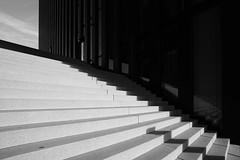 Creeping shadows (frankdorgathen) Tags: alpha6000 sony1018mm monochrome blackandwhite schwarzweis schwarzweiss minimalistic minimalismus minimalism düsseldorf mediaharbour medienhafen hyattregency hotel gebäude building architecture architektur schatten shadow treppe stairs