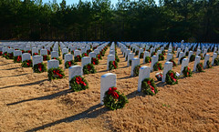Georgia National Cemetery (davidwilliamreed) Tags: christmaswreaths wreathsacrossamerica cemetery graveyard tombstones graves georgianationalcemetery veterans cantonga cherokeecounty