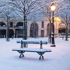 Paris under the snow (Yann OG) Tags: paris parisian parisien france french français placedauphine neige snow sunrise leverdusoleil îledelacité hiver banc lampadaire réverbère 50mm f18 75001 squareformat bench