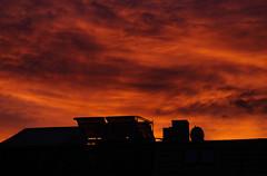 A red start (frankdorgathen) Tags: alpha6000 sony18200mm natur nature dach roof ruhrgebiet ruhrpott rüttenscheid essen silhouette wolken clouds himmel sky morgens morning dawn sonnenaufgang sunrise