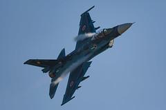 DSC_5697.jpg (kenichi0213) Tags: jasdf 航空自衛隊 築城基地 築城基地航空祭 airshow nikon nikkor