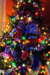 espiritus navideños (gabrielg761) Tags: espiritus navidad arbol luces color