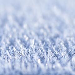 dustbin N ° 5 (caeciliametella) Tags: lorrainekerr photography 2019 caeciliametella ice cold hoarfrost frost ghiaccio bin dustbin abstract astratto 11 square quadrato brina crystal crystals cristalli