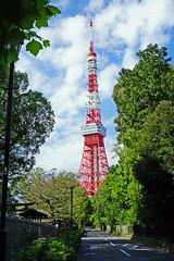 Tokyo Tower (SomePhotosTakenByMe) Tags: tokyotower tower turm tokyo tokio minato japan outdoor baum tree gebäude building architektur architecture