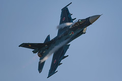 DSC_5698.jpg (kenichi0213) Tags: jasdf 航空自衛隊 築城基地 築城基地航空祭 airshow nikon nikkor