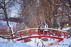 Jacinthe, Line, Lucille et Pixel (guysamsonphoto) Tags: guysamson winter hiver portrait snow neige bridge pont passerelle terredesjeunes victo victoriaville lucillelechihuahua