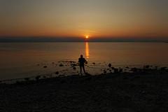 Staring at the sea (Welsh fella) Tags: ricohgr irishsea sunrise coastalscene rhosonsea solitaryfigure firstlight