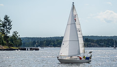 Ballad, Vaxholm (Gösta Knochenhauer) Tags: 2019 july panasonic lumix fz1000 dmcfz1000 leica lens vaxholm sverige sweden boat stockholm archipelago p9050904nik p9050904 nik speliofind