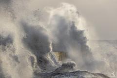 Pour sortir de l'eau, utilise l'échelle ! (stephanegachet) Tags: france bretagne breizh morbihan ploemeur lomener sea seascape landscape mer paysage tempete tempest storm stephanegachet gachet