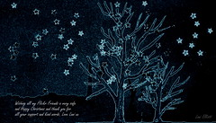 Aussie Christmas Landscape (Lani Elliott) Tags: painting watercolour landscape aussiechristmaslandscape lanielliott art drawing sketch starry stars sky trees blackbackground