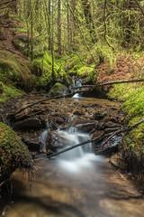Hidden Creek (Click And Pray) Tags: managedbyclickandpraysflickrmanagr nopeople argyll argyllandbute cowal scotland scottish longexposure river stream creek nopeopleargyllargyllandbutecowalscotlandscottishlongexposureriverstreamcreek