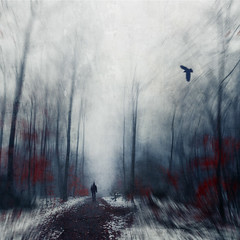 december tristesse (Dyrk.Wyst) Tags: atmosphere chilly cold fog forest hiking landscape misty mood nature outdoors snow trees wet woods conceptual blur motion dynamic redfoliage bird wanderer