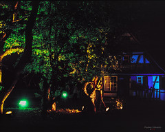Green Light in the Night (fs999) Tags: fs999 fschneider aficionados zinzins plaubel makina 67 plaubelmakina67 6x7 film camera filmcamera 60x70 ashotadayorso topqualityimage topqualityimageonly artcafe pentaxart corel paintshoppro paintshoppro2019ultimate 2019ultimate nikkor12880mm nikon nikkor 128 80mm 8028 écomusée alsace ungersheim hautrhin france fujifilm fujichrome provia 400x 400iso rxp provia400x color slidefilm slide reversible tetenal colortec e6 home development plustek opticfilm 120 scanner 2400dpi silverfast ai studio