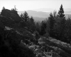 Mühlriegel (str.ainer) Tags: mühlriegel bayerischerwald bavarianforest mamiya rb67 sekorc90mm ilford fp4 adox fx39