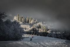 Ski resort, Vosges region of France (Bruno Chapiron) Tags: arbre france hiver montagne nature neige nourriture pays restauration saisons vosges vosgesimages mountain