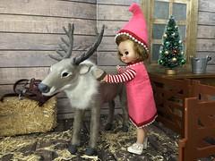 2. Brushing Cupid (Foxy Belle) Tags: christmas barn reindeer santa diorama doll 16 scale vintage felt betsy mccall tiny 9 elf costume handmade sew ooak wooden hay team caribou flocked miniature animal scene