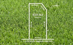 1 COOPER ANGUS GROVE, Wattle Park SA