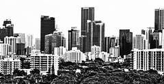 City of Miami, Miami-Dade County, Florida, USA (Photographer South Florida) Tags: miami florida usa miamibeach miamigardens northmiamibeach northmiami miamishores cityscape city urban downtown density skyline skyscraper building highrise architecture centralbusinessdistrict miamidadecounty southflorida biscaynebay cosmopolitan metropolis metropolitan metro commercialproperty sunshinestate realestate tallbuilding midtownmiami commercialdistrict commercialoffice wynwoodedgewater residentialcondominium dodgeisland brickellkey southbeach portmiami sobe brickellfinancialdistrict keybiscayne artdeco museumpark brickell historicalsite miamiriver brickellavenuebridge midtown sunnyislesbeach moonovermiami mimo magiccity southbeachpier starisland bluegreendiamond venetianislands macarthurcauseway terminalislandroad fisherisland