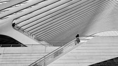 354-011 (mjlockitt) Tags: station architecture belgium engineering railway structure liège sunday roadtrip santiagocalatrava photojournal