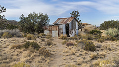 Mojave Cabin (magnetic_red) Tags: cabin house shack tin rusted rusty old abandoned desert trees rocks mojavenationalpreserve ruralscene nopeople