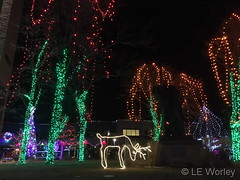 December 21, 2019 - Beautiful Christmas lights in Westminster. (LE Worley)