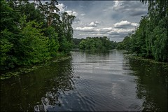 18dre0608 (dmitryzhkov) Tags: nature animal dmitryryzhkov naturephotography europe biology life wildlife wild environment insect moscow russia fauna flora sony color colour colors landscape river water pond tree forest wood