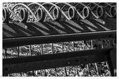 Machinery With Cobwebs (lorinleecary) Tags: cobwebs farmmachine cuestacollege blackandwhite machinery monochrome