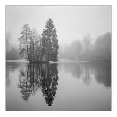 Foggy morning at Lake Kell (werner-marx) Tags: analog film meinfilmlab mediumformat agfaisoletteiii solinar kodaktrix400 kellamsee lakekell fog foggy trees