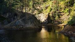 *** (pszcz9) Tags: przyroda nature natura naturaleza parkkrajobrazowy rudawyjanowickie landscapepark woda water staw pond jesień autumn beautifulearth pejzaż landscape sony a77 polska poland las forest forestimages