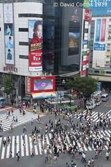 Tokyo - Shibuya - Shibuya Crossing (CATDvd) Tags: japan 日本 nippon nihon japó japón 日本国 catdvd nihonkoku niponkoku stateofjapan nikond7500 estadodeljapón estatdeljapó shibuya 東京 tokio 東京都 tōkyō tōkyōto 関東地方 tòquio tokyometropolis kantōchihō davidcomas kantōregion july2019 httpwwwdavidcomasnet httpwwwflickrcomphotoscatdvd regiódekantō regióndekantō building architecture arquitectura edificio shibuyacrossing edifici 渋谷区 shibuyaku flickrtravelaward aasia