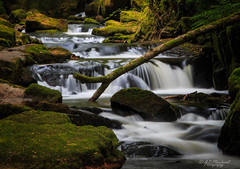 Fall, fell, fallen (Through_Urizen) Tags: category cornwall england golithafalls longexposure places waterfall canon1585mm canon canon70d cascade rocks river stream whitewater woodland countryside forest uk unitedkingdom greatbritain