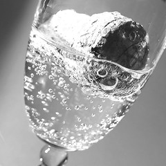 ... Champagne! (Le.Patou) Tags: blackandwhite bn bnw nb party bubbles bubble cork glass square champagne closeup happiness joy jsslll fz1000 bestwithholidaysis macromondays psp