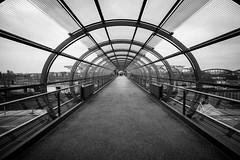 bridge between bridges (Özgür Gürgey) Tags: 2019 bw d750 elbbrücken hamburg nikon samyang architecture bridge grainy leading lines symmetry tube vanishingpoint 14mm