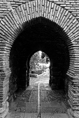Arch (only lines) Tags: arch malaga alcazaba