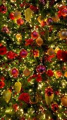 CHRISTMAS 2019 (pwitterholt) Tags: christmas merrychristmas kerst kerstverlichting kerstsfeer kerstgevoel kersttijd hoop hope cosy gezellig remember herinner canon canonsx40 canonpowershotsx40hs canonpowershot feestdagen holidays familie family vrienden friends