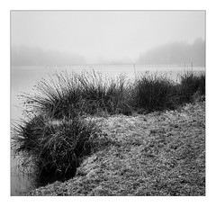 Foggy morning at Lake Kell (werner-marx) Tags: analog film meinfilmlab mediumformat agfaisoletteiii solinar kodaktrix400 kellamsee lakekell fog foggy mist breathtakinglandscapes