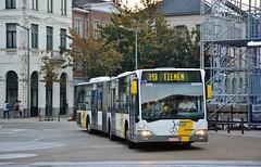 330893 313 (brossel 8260) Tags: belgique bus prives delijn brabant vanmullem
