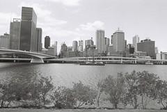 Brisbane (goodfella2459) Tags: nikonf4 afnikkor24mmf28dlens kodaktrix400 35mm blackandwhite film analog brisbane city queensland buildings trees river bridge bwfp