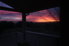Screened Sunset (sydneyharter) Tags: dusk architecture porch sky purple sunset door screen