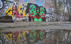 faces (rafasmm) Tags: łódź lodz poland polska europe street streetphoto streets streetphotography streetart streetscene graffiti painting urban scenery green face mural reflection town walk outdoor color nikon d90 nikkor 18105 afs dx