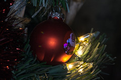"Decerating (f.tyrrell717) Tags: balls christmas lighty red macro monday what love about holidays mondays"" ""best with is…"""